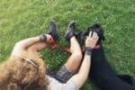 Verkehrsregeln gemäß § 28 StVO: Worauf müssen Hunde und ihre Halter auf Spaziergängen achten?