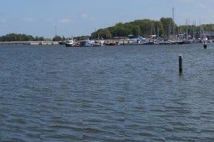 Angeln ohne Angelschein in Mecklenburg-Vorpommern (MV): Ist das erlaubt?