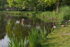 Der Angelschein in Niedersachsen befähigt zum Fischen in allen Gewässern.