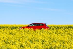 Wie lässt sich die Reise mit dem Auto im Sommer möglichst angenehm gestalten?