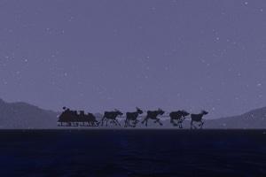Noch ein Bußgeld für den Weihnachtsmann: Die Beleuchtung des Schlittens lässt zu wünschen übrig.
