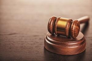 Ente überfahren: Eine Strafe wegen Tierquälerei kann unter Umständen drohen.