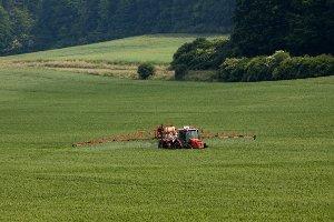 Gentechnik hat viele Bereiche. Grüne Gentechnik kommt in der Landwirtschaft vor. Rote, weiße und graue Gentechnologie ist weniger bekannt.