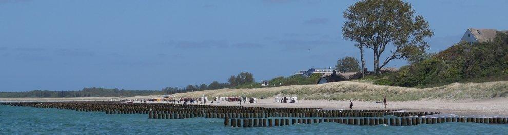 Angeln ohne Angelschein in MV (Mecklenburg-Vorpommern)