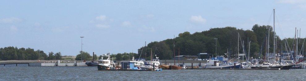 Der Angelschein: In Deutschland fischen dürfen