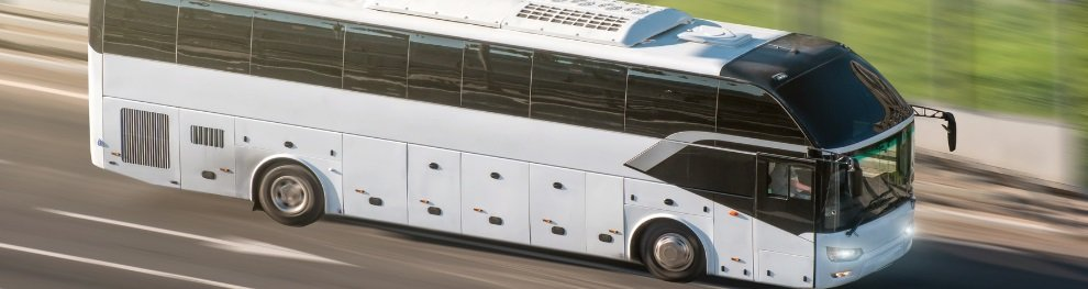 Bus-Bußgeldkatalog: Bußgelder, Punkte & Fahrverbote 2020