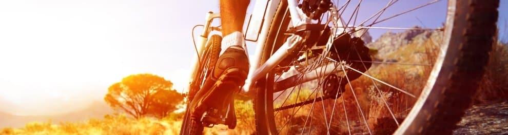 Ein Fahrrad-Schutzblech schützt Sie vor Schmutz von der Straße