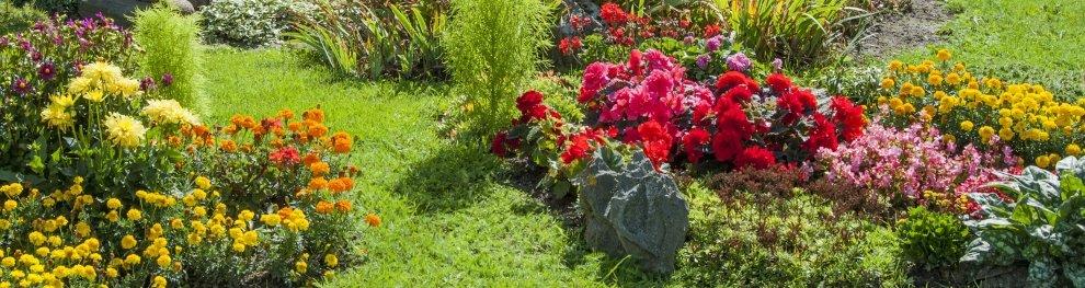 Erdaushub und Gartenabfälle entsorgen
