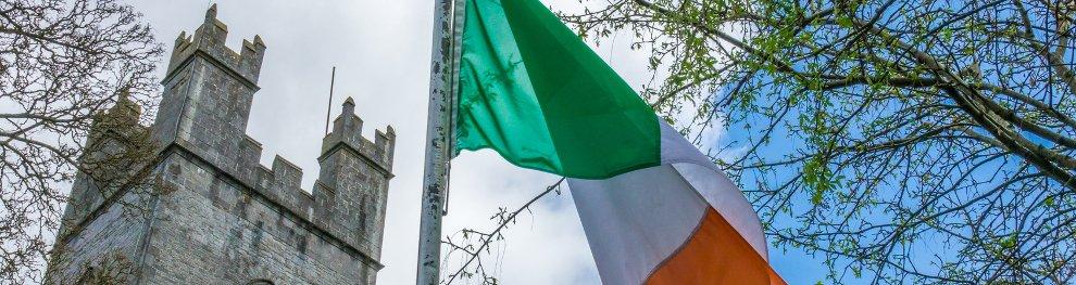 Autofahren in Irland: Linksverkehr und Schafe auf der Straße