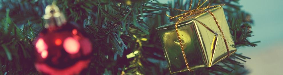 Den Weihnachtsbaum sicher transportieren: Wie geht das?