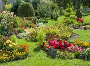 Der Hummelschutz kann im eigenen Garten beginnen