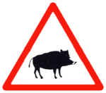 Verkehrszeichen in Kroatien: Achtung Wildschweine
