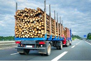 Ein Lastzug ist ein LKW mit Anhänger. Welche Länge ist hier vorgeschrieben?