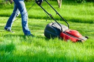 Für Rasenmäher greift die Lärmschutzverordnung für Geräte und Maschinen. Doch in der Stadt müssen Sie immer mit etwas Lärm leben.