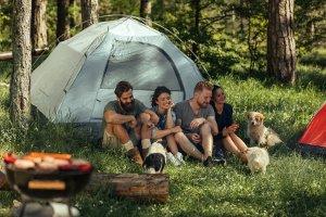 Auch im Naturschutzgebiet und in Nationalparks ist Wild-Campen nicht erlaubt