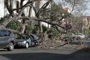 Wurde durch einen Orkan das Auto beschädigt, zahlt die Versicherung meist.