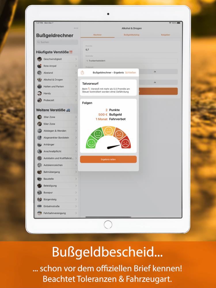 Bußgeldrechner-App fürs iPad Screen 3