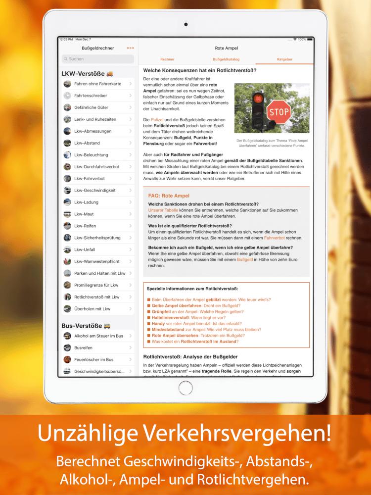 Bußgeldrechner-App fürs iPad Screen 4