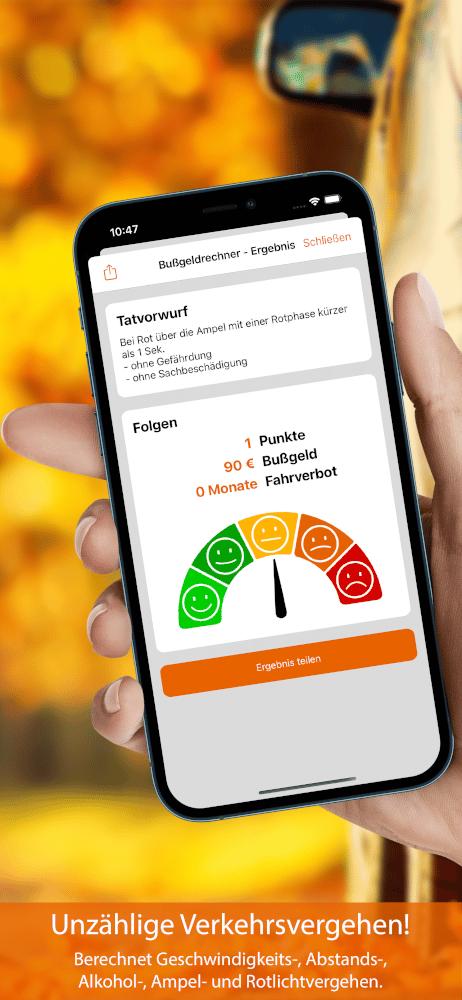Vorschau Bußgeldrechner-App Screen 4