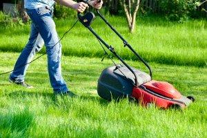 Sonntags ist Rasenmähen nicht gestattet