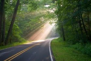 Ein Spurhalteassistent warnt Sie, wenn Sie eine durchgezogene Linie überfahren, und führt Sie zurück in die Spur.