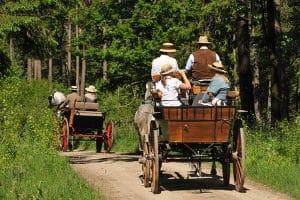 Droht eine Strafe? Auf einem Feldweg zu fahren, ist meist erlaubt.