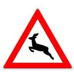 Um zu verhindern, dass ein Tier angefahren wird, sollten Sie unter anderem auf dieses Schild achten.