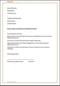Antrag An Das Finanzamt De Musterbrief Download 13