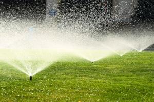 Wegen Wasserknappheit ist es in einigen Kommunen untersagt, Grünflächen zu sprengen und Pools bzw. Planschbecken zu befüllen.