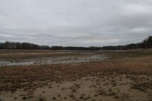Aufgrund der anhaltenden Trockenheit herrscht teilweise Wassernotstand in Deutschland.