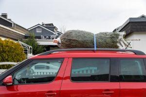 Binden Sie Ihren Weihnachtsbaum nicht ans Abschleppseil, sondern transportieren Sie ihn auf dem Dach oder im Kofferraum des Autos.