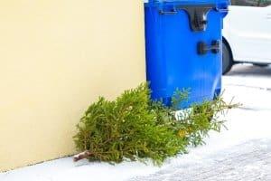 Dürfen Sie einen Weihnachtsbaum am Abschleppseil hinter Ihrem Auto herziehen?