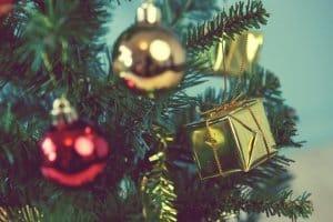Wenn Sie den Weihnachtsbaum legal selber schlagen, birgt das gewisse Vorteile für Sie und die Umwelt. Während des Events kann die Familie auch gemeinsam Spaß haben.