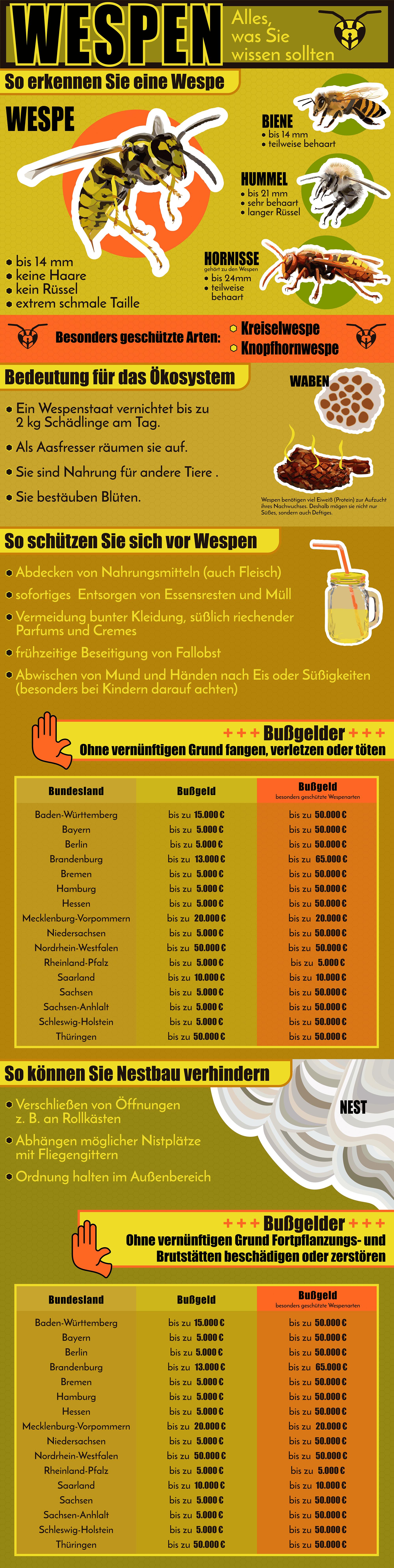 Wespen-Infografik