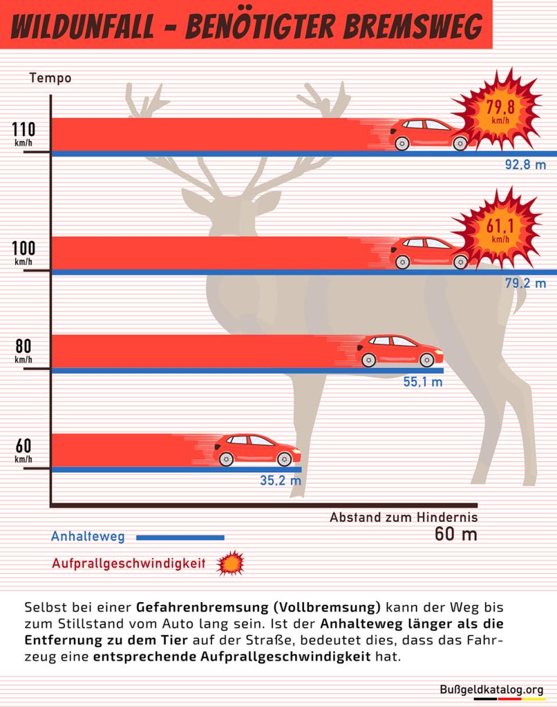 Die Grafik zeigt, wie lang der Anhalteweg eines Autos bei verschiedenen Geschwindigkeiten ist und mit welcher Gesschwindigkeit es entsprechend auf ein 60 Meter entferntes Wildtier prallen würde.