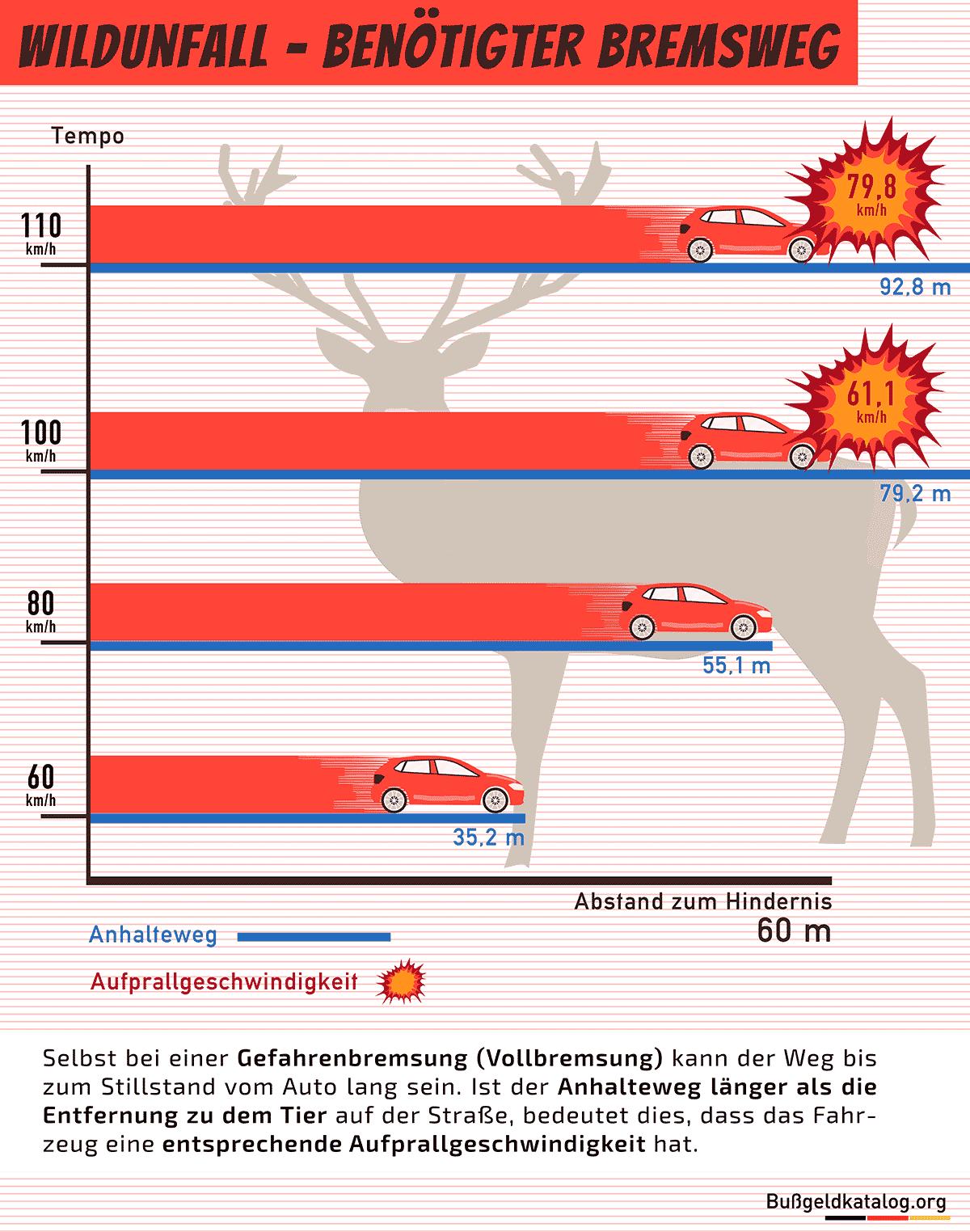 Bremsweg und Aufprallgeschwindigkeit bei einem Wildunfall