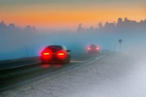 Folgen der Zeitumstellung für Autofahrer: Bei Dämmerung findet vermehrt Wildwechsel statt.